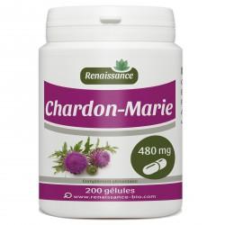 CHARDON MARIE 200  gélules dosées à 595 mg